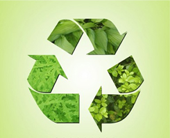 Sustainability and Compliance
